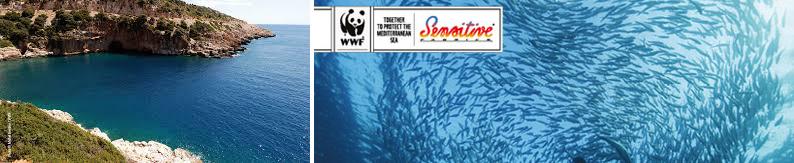 Salvare il mare con Eurojersey