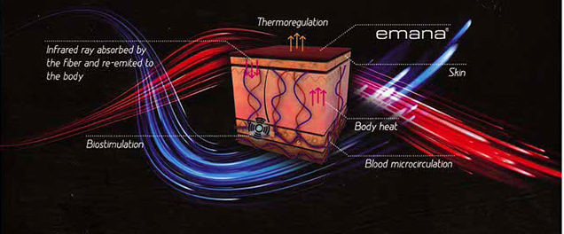 EmanaTechnologyDiagram